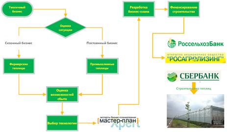 схема финансирования тепличного хозяйства через бизнес-план.